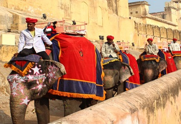 Royal Rajasthan Tourism Packages